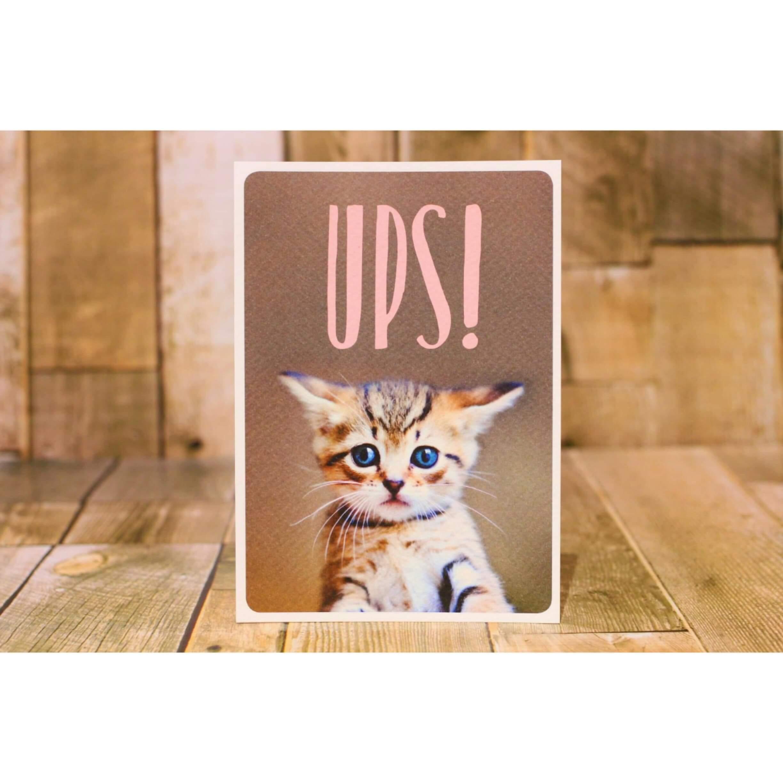 子猫 メッセージカード/ポストカード 浜松雑貨屋 C0pernicus