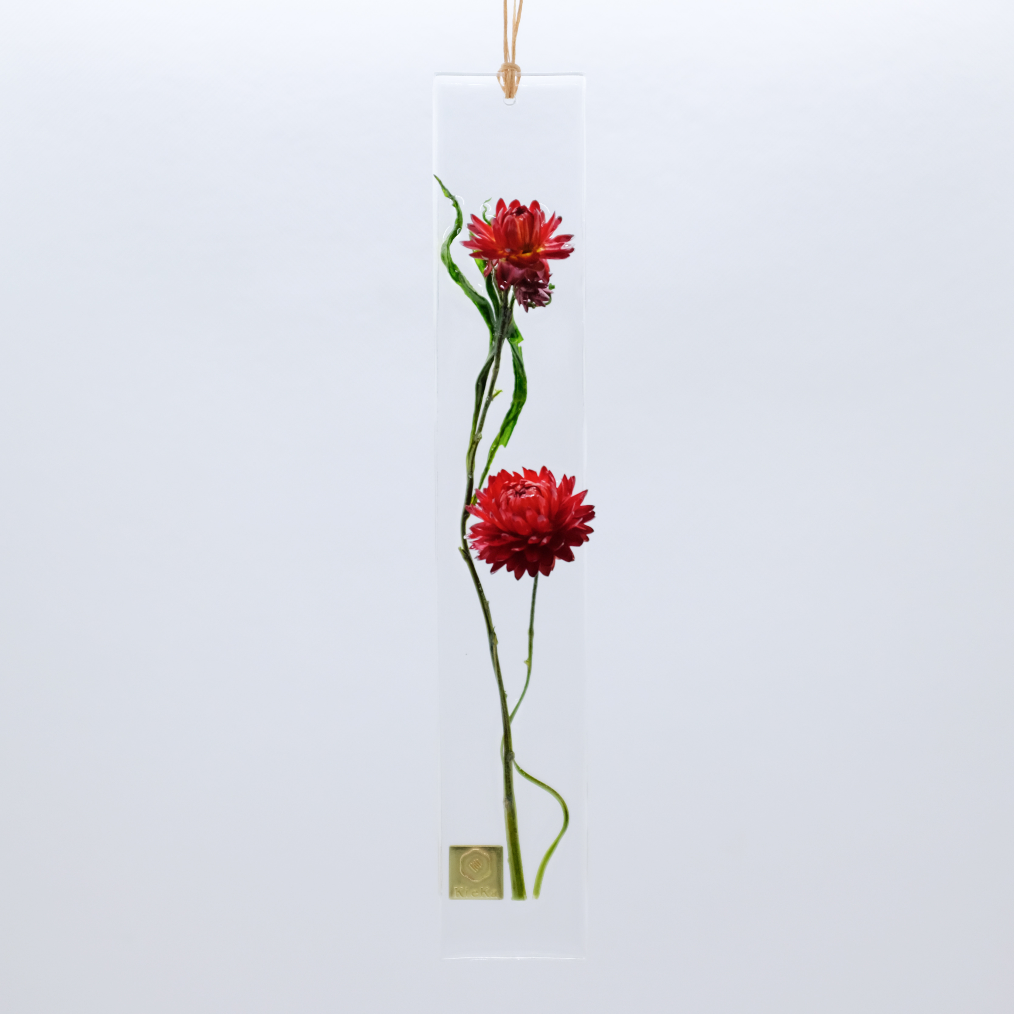 dried flower S ヘリクリサム レッド系