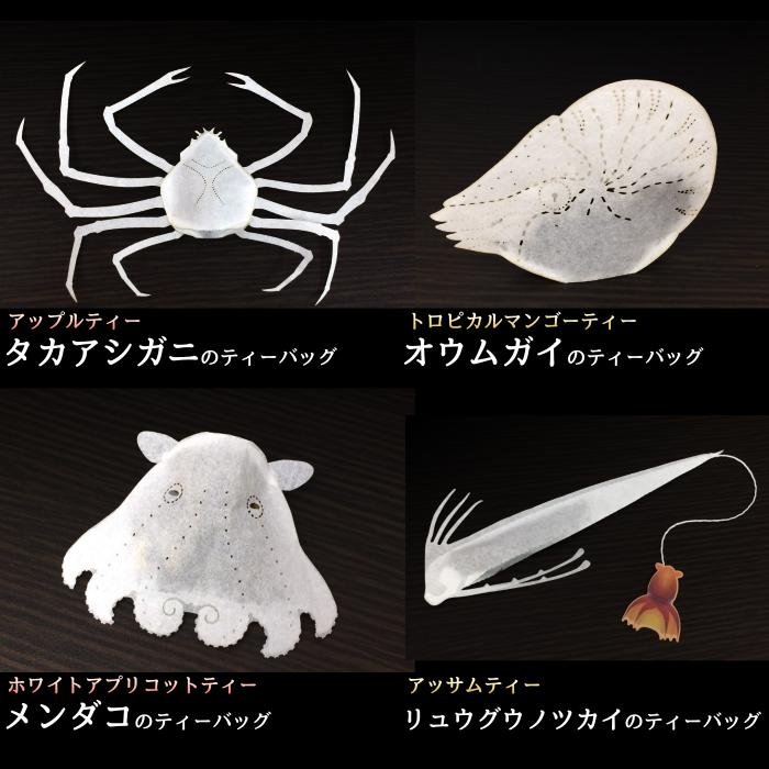 新・深海生物のティーバッグ リュウグウノツカイ、メンダコ、オウムガイ、タカハシガニ