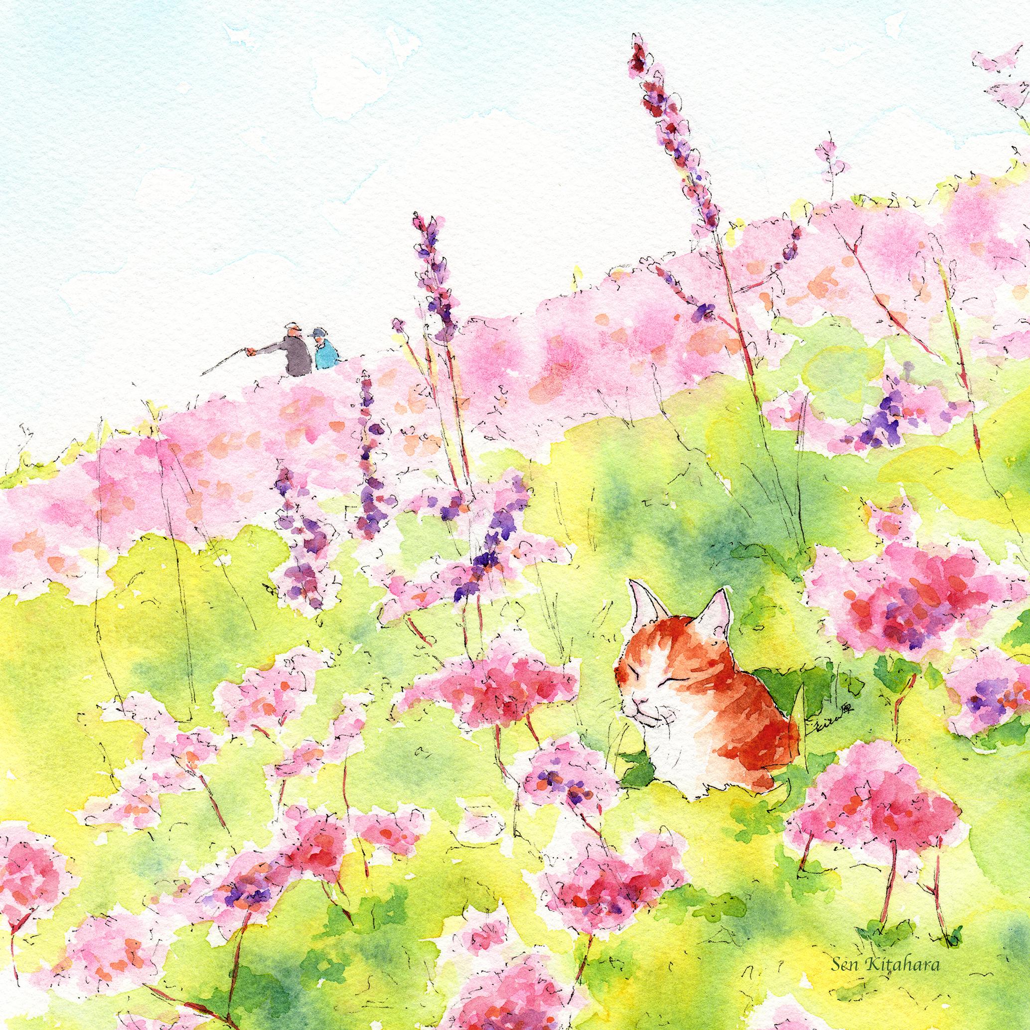 絵画 インテリア アートパネル 雑貨 壁掛け 置物 おしゃれ 水彩画 創作 猫 ネコ ねこ 動物 ロココロ 画家 : 北原 千 作品 : お日様ぽかぽか