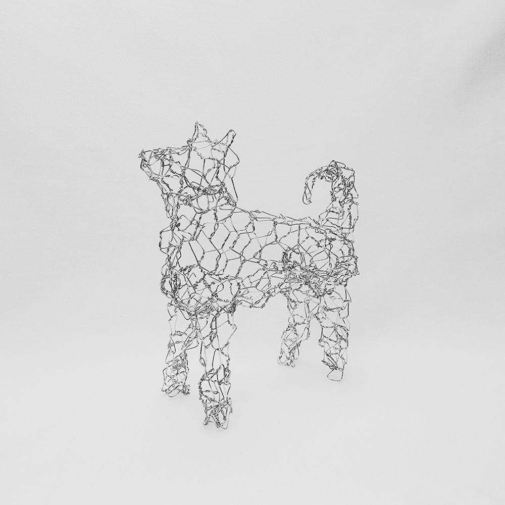 柴犬 / Shiba Inu