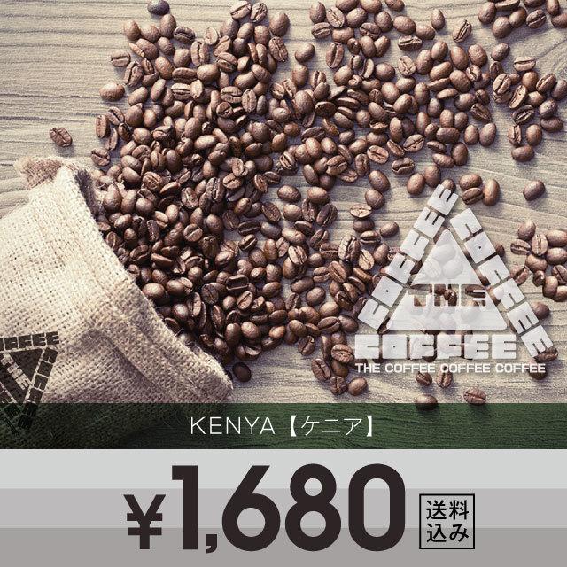 ケニア コラ 200g
