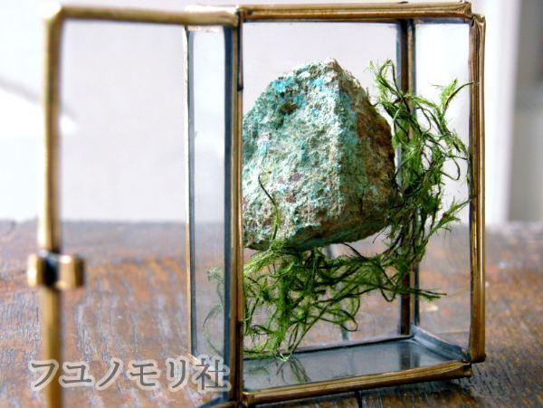 オブジェ - 珪孔雀石/孔雀石 - フユノモリ社