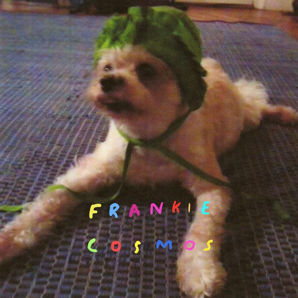 Frankie Cosmos / Zentropy(1000 Ltd LP)