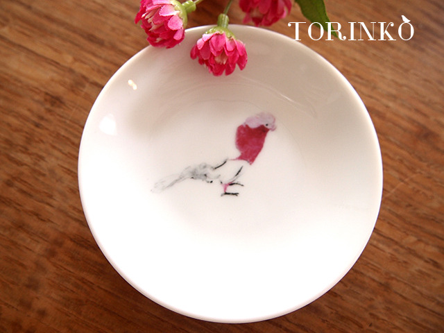 モモイロインコ お皿 小サイズ(鳥・オウム・インコ)