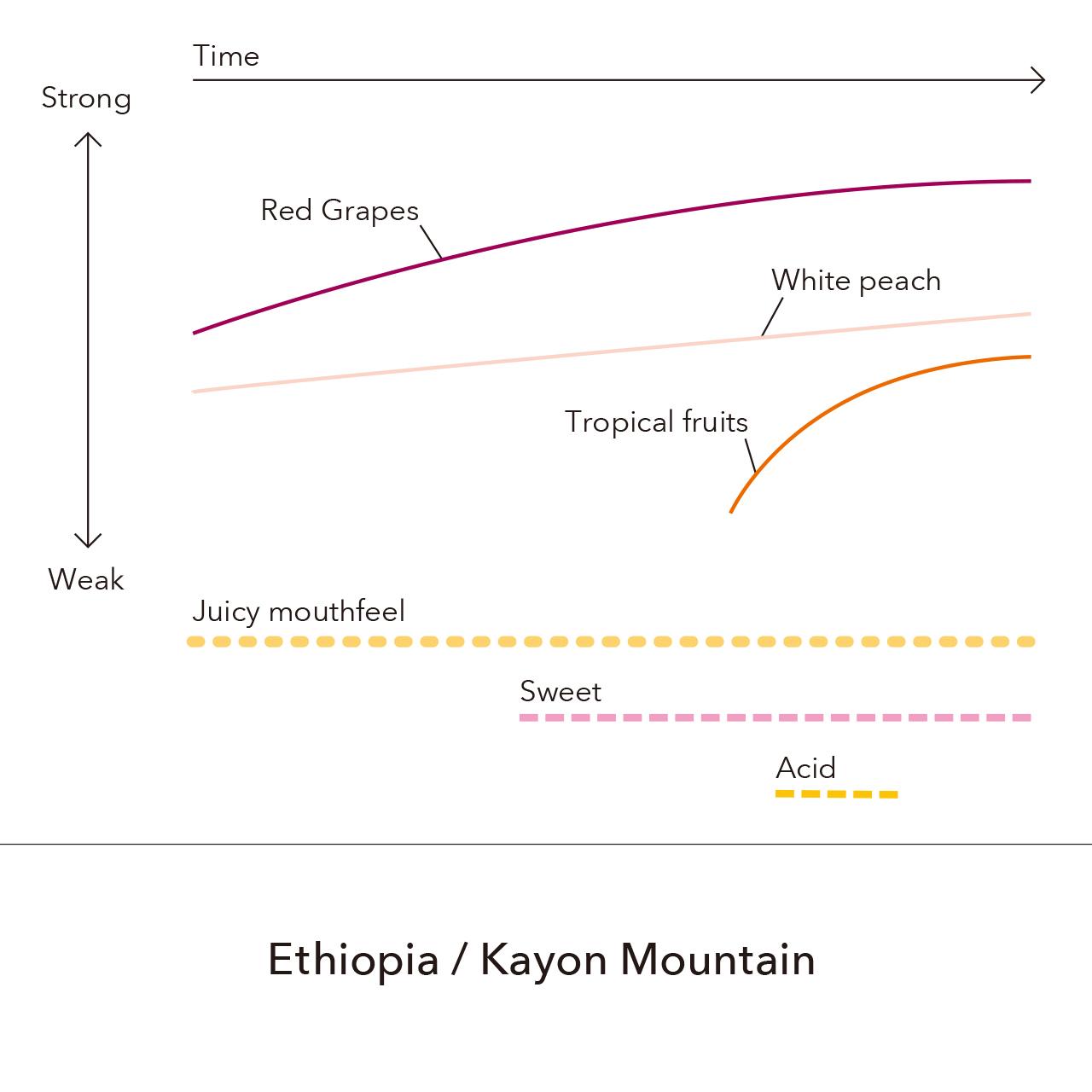 Ethiopia - Kayon Mountain / 150g