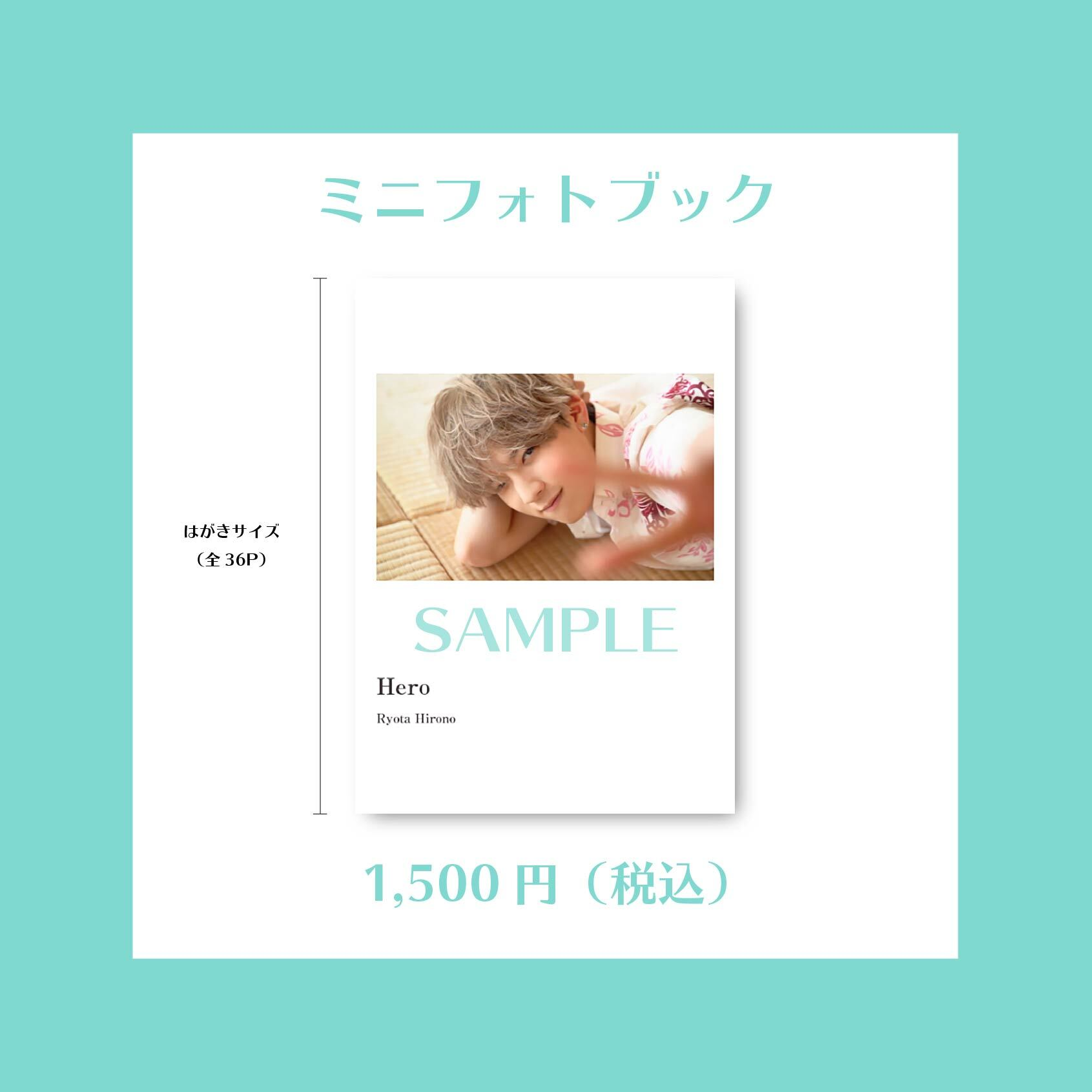 廣野凌大 ミニフォトブック(1st DVD)