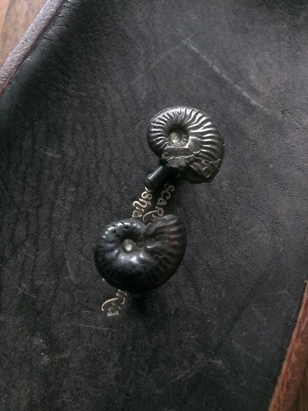 アンモナイト 化石 カフスボタン M1
