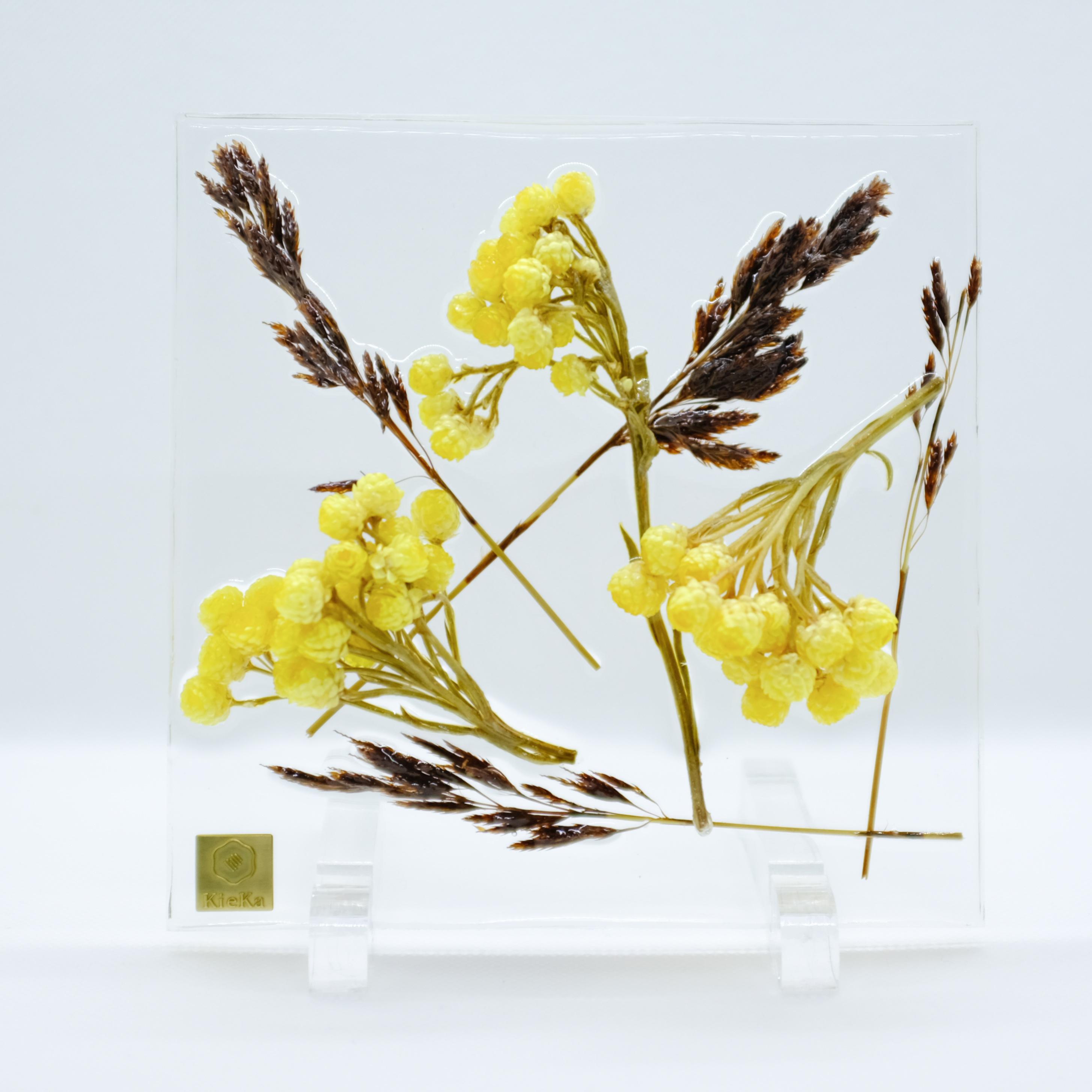 dried flower square イモーテル+タッセルリード