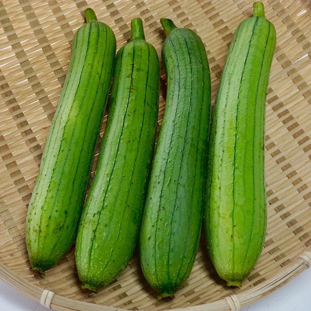 へちま(ナーベーラー)8本前後2kg【農薬・化学肥料不使用】沖縄県産 送料無料