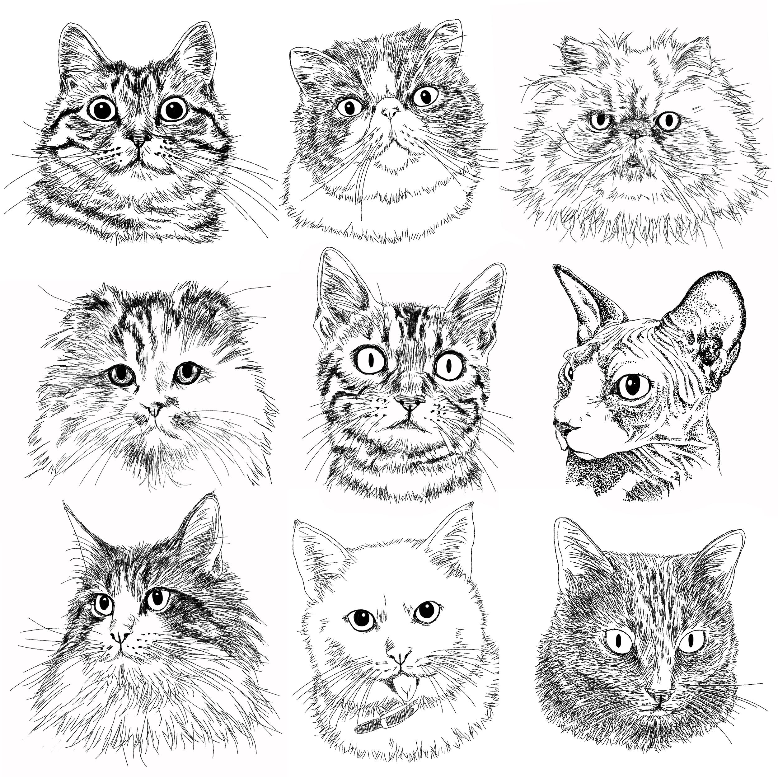 猫の手描きイラスト 似顔絵 白黒 作成 顔のみ 動物 人間可 猫雑貨 グッズ通販 猫や動物イラスト 似顔絵作成 365cat Art