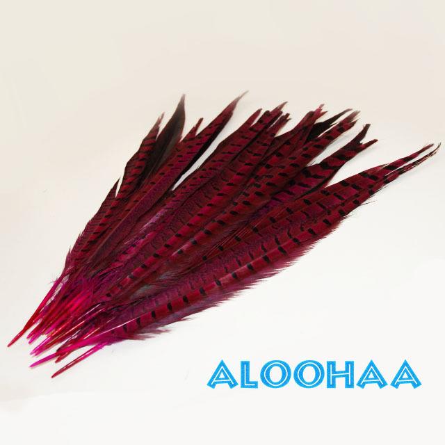 ロングフェザー 【ピンク】30-35cm 5本 タヒチアン 衣装 材料 キジ 染め 羽根
