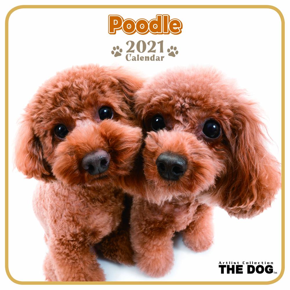 2021年 THE DOGミニカレンダー【ミニサイズ】 プードル(ミニ)