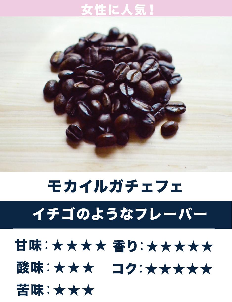 モカ・イルガチェフェ ☆酸味・香り系☆ 苺のようなフルーティーな香り、すっきりとした酸味