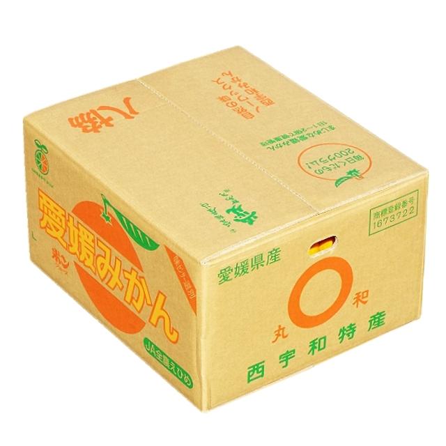 八協みかん(ご家庭用・レギュラー品) 10kg入 - 画像2