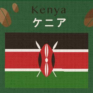 ケニアAA(大袋400g)