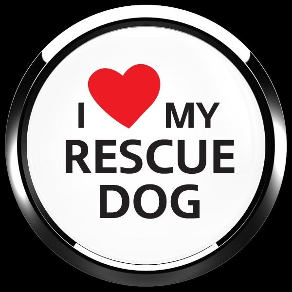 ゴーバッジ(ドーム)(CD1077 - I LOVE RESCUE DOG) - 画像3