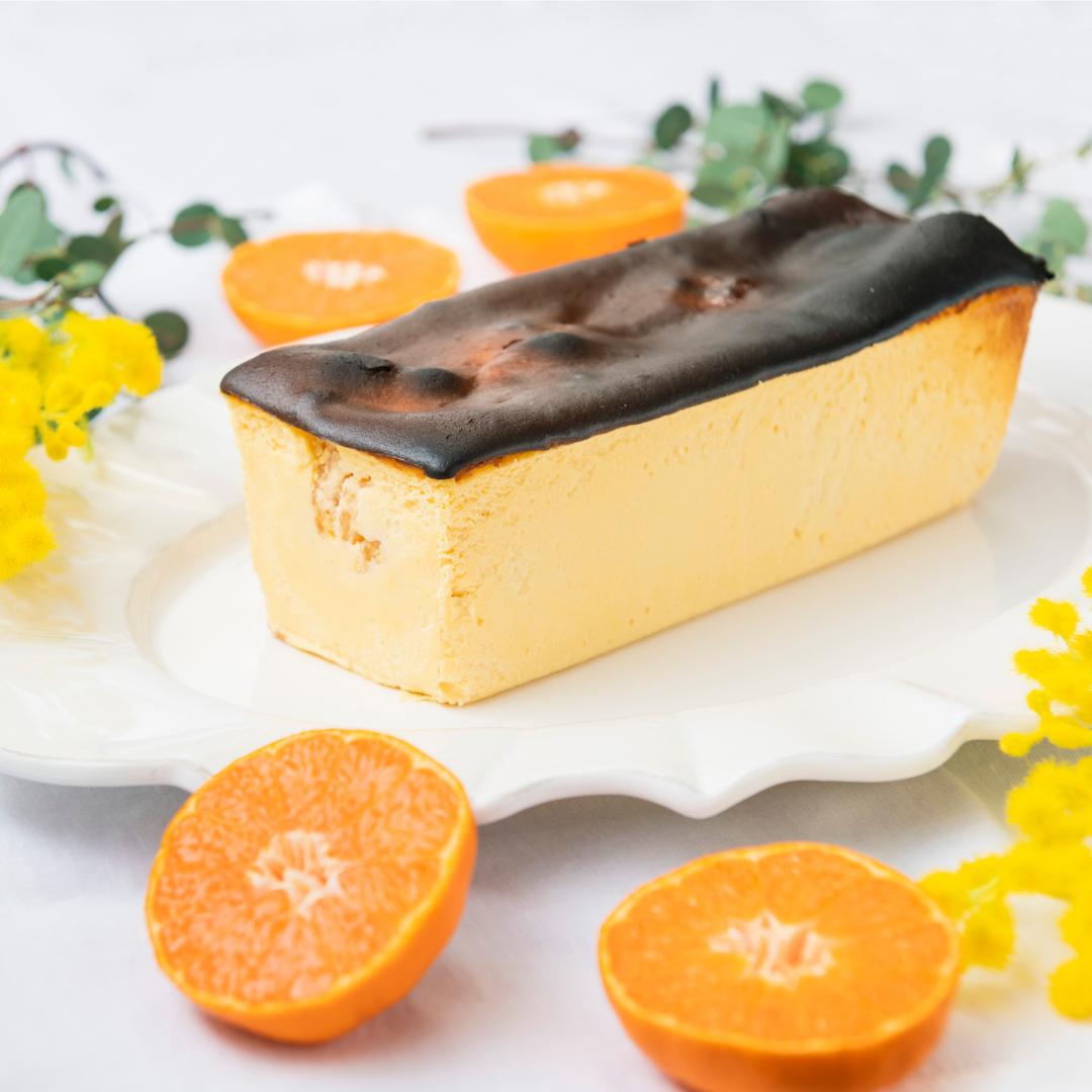 【配送希望の方はこちらから】旅するチーズケーキ ホール from こたつファーム