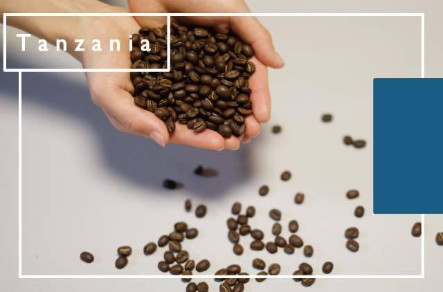 [タンザニア] 水素焙煎珈琲豆