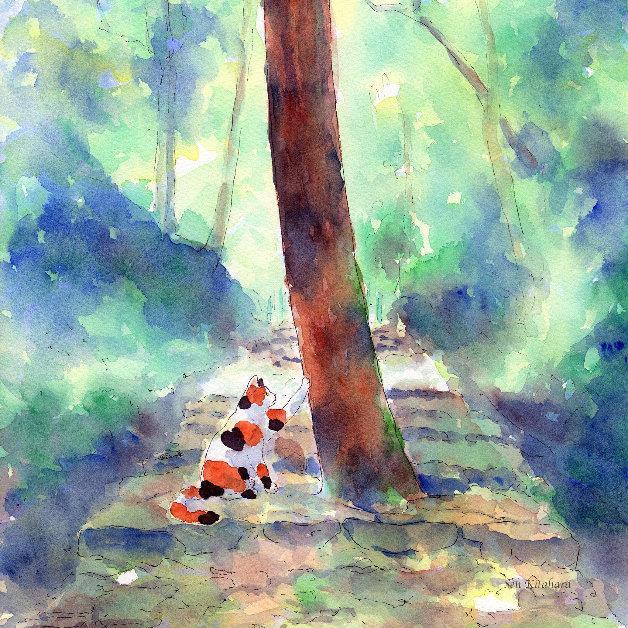 絵画 インテリア アートパネル 雑貨 壁掛け 置物 おしゃれ 水彩画 創作 猫 ネコ ねこ 動物 ロココロ 画家 : 北原 千 作品 : 道の真ん中やで。きみ