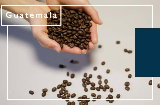 [グアテマラ] 水素焙煎 非酸化珈琲豆