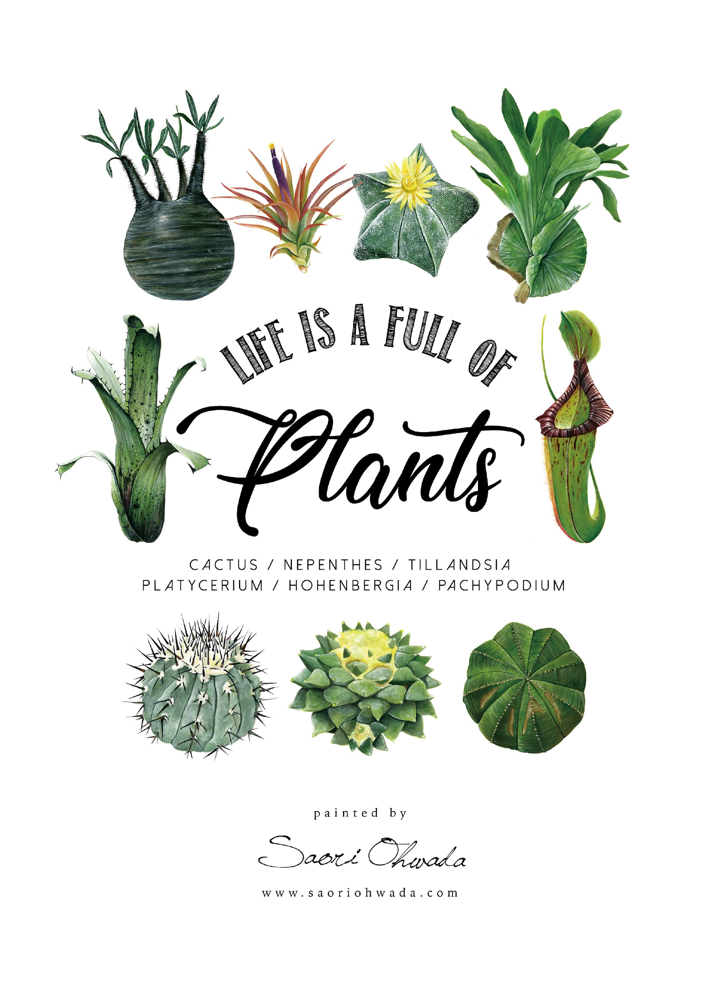 Botanical ポスター vol.2