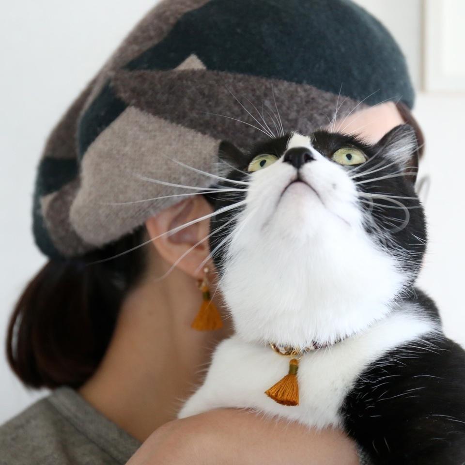 猫の首輪とピアスのセット