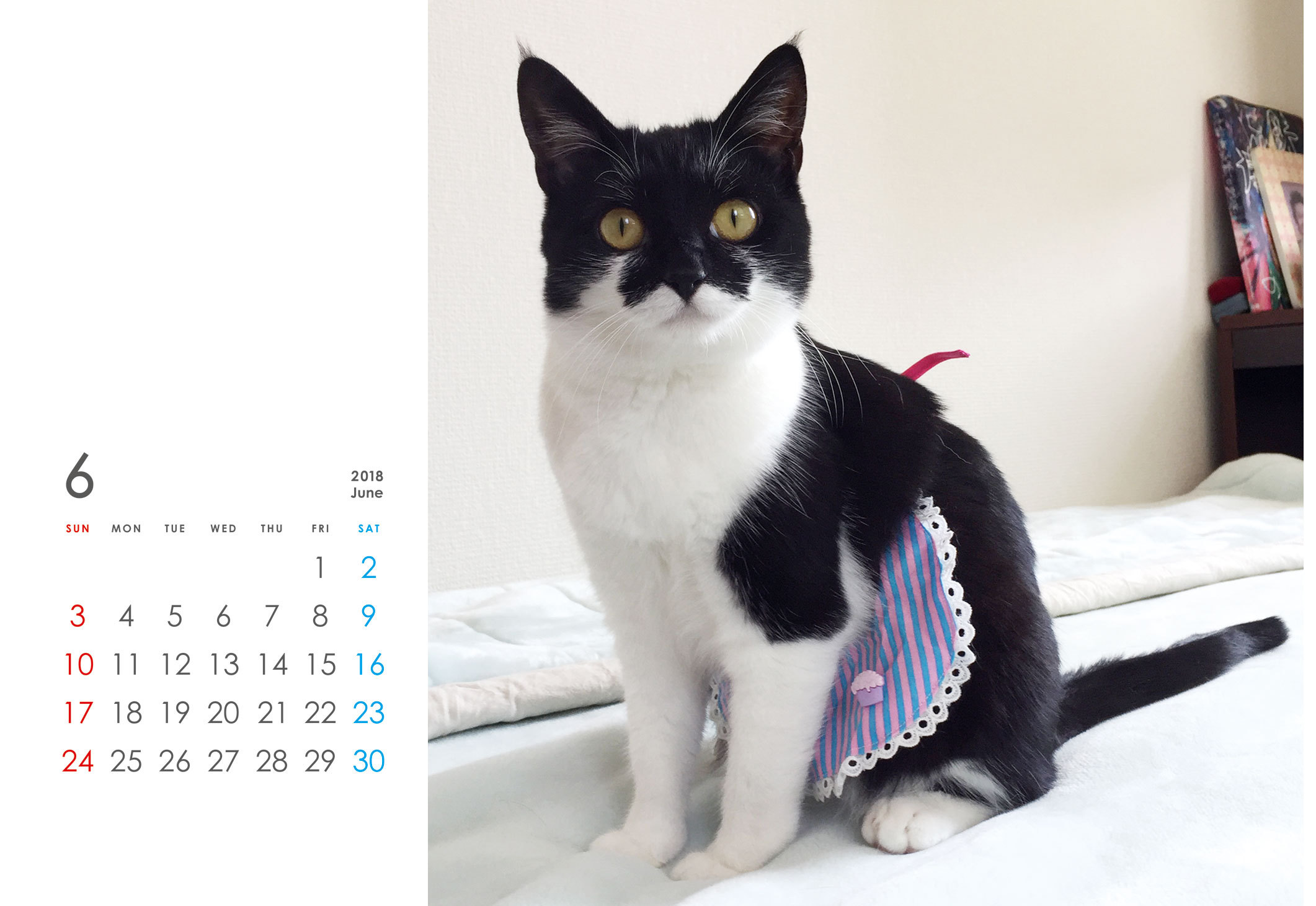 千葉ちゃんカレンダー2018 (4月始まり)
