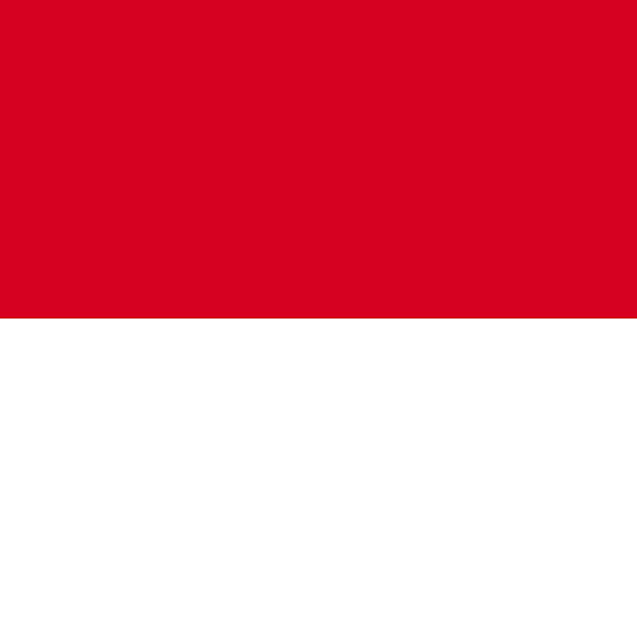 インドネシア マンデリン ビンタンリマ 100g