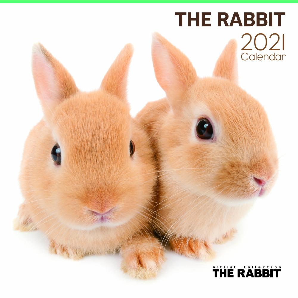 2021年 Artlist Collectionカレンダー【大判サイズ】THE RABBIT