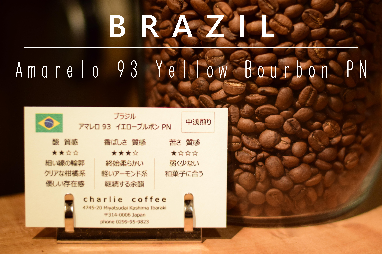 中浅煎り/ブラジル アマレロ 93 イエローブルボン PN 100g