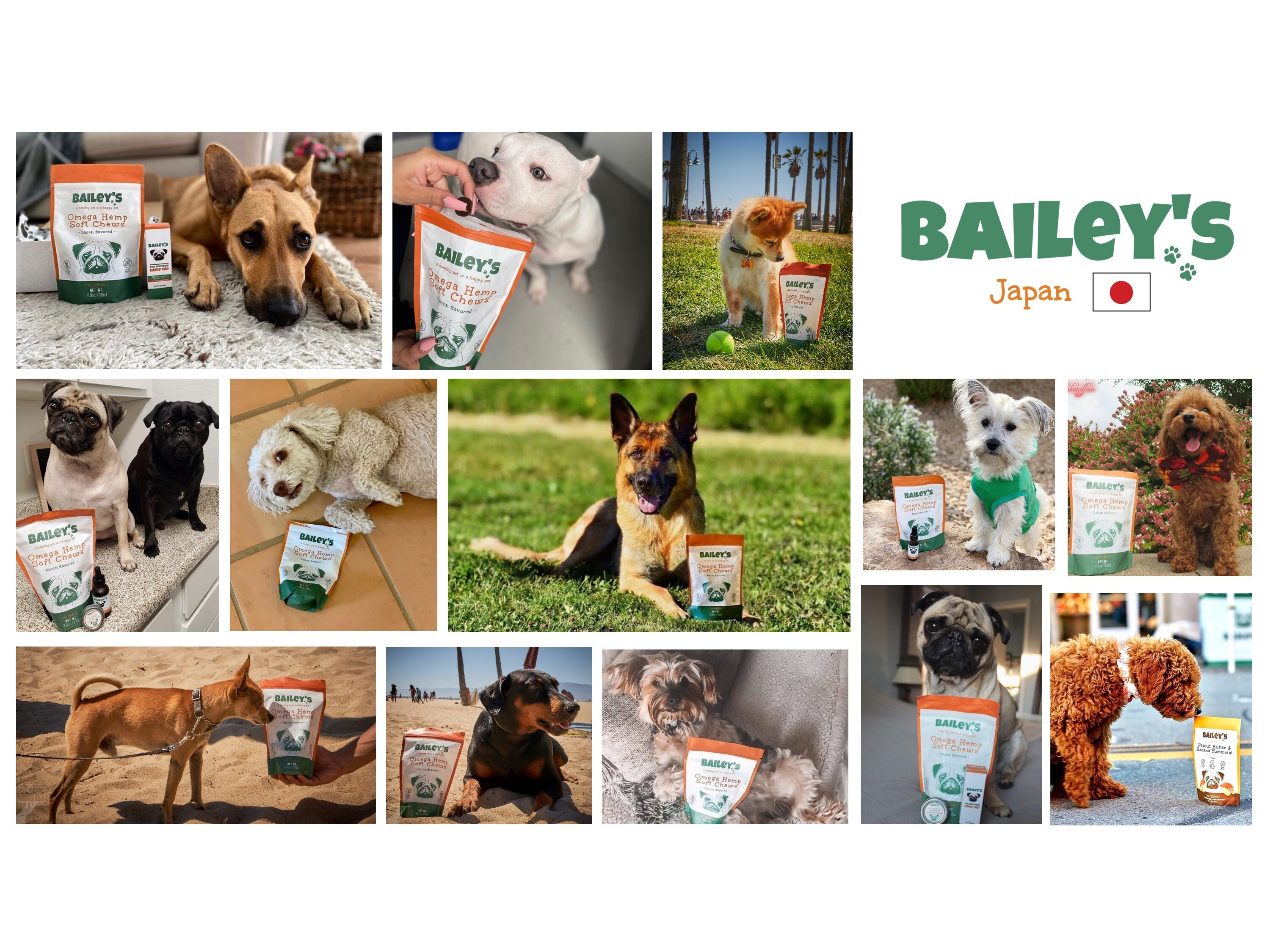 ABOUT BAILEY'S