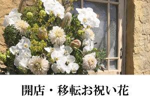 千葉・幕張でお花の注文|幕張の花屋より全国へお届け情報特集1