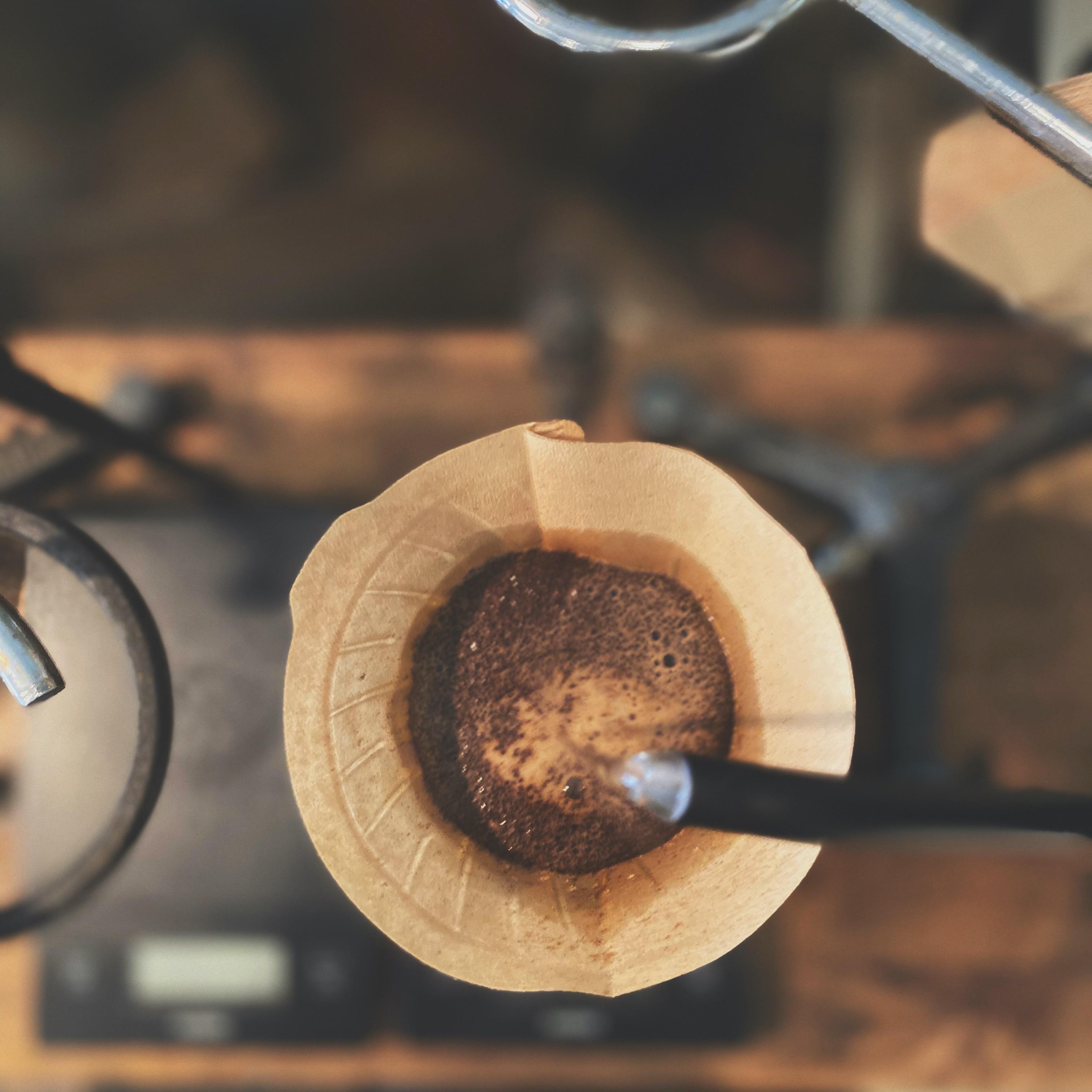 COFFEE AMP THE ROASTER紹介画像2
