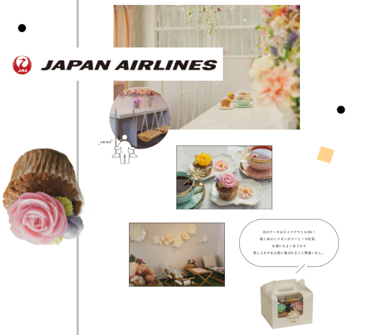 ✿JAPAN AIRLINES✿