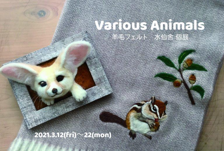 水仙舎個展  「Various Animals」