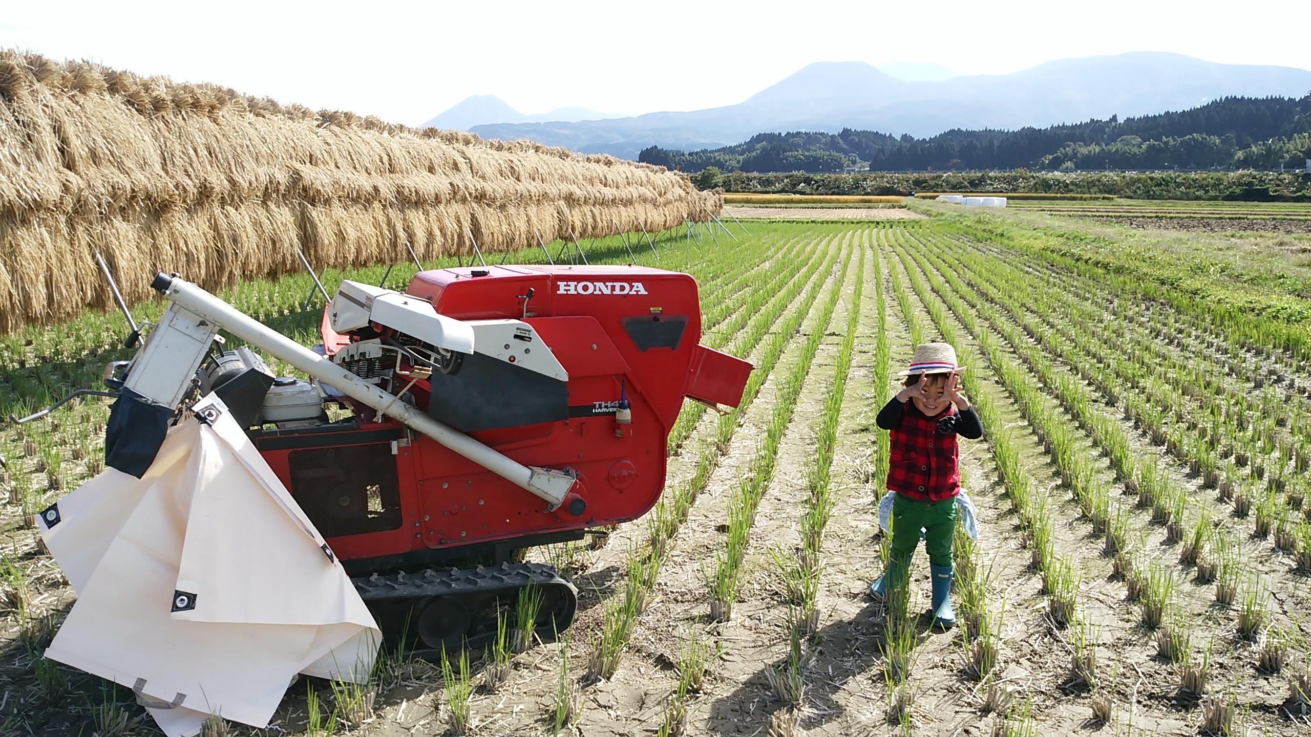 【自社農園産】   えびの米ひのひかり