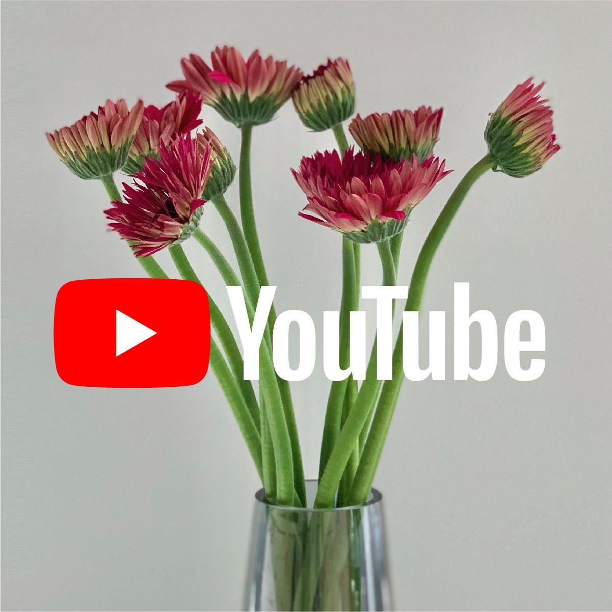 お花の育て方・飾り方<br/> お花の生産者にインタビュー