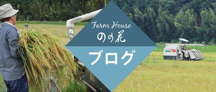 ファームハウスのの花ブログ