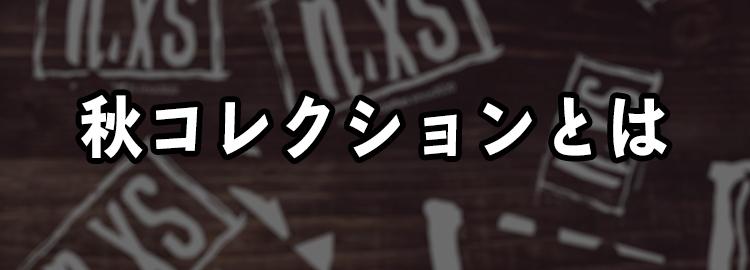 秋コレクション登場!