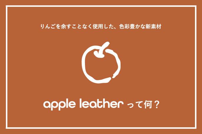 アップルレザーの説明HP
