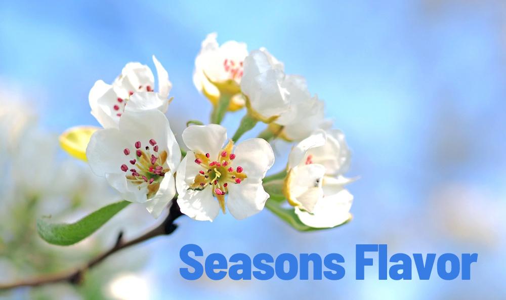 季節のフレーバー