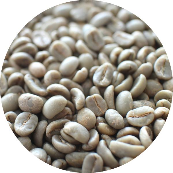 生豆の選定・水洗い