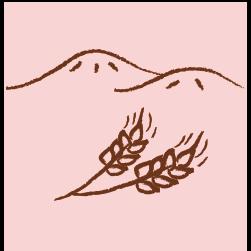 秦野の地場産の素材