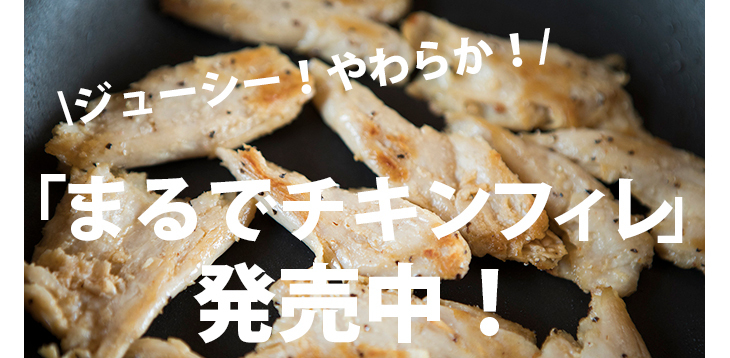 Terra Foods