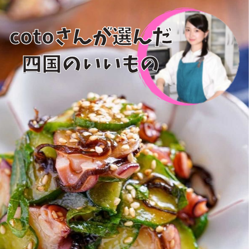料理研究家 cotoさん