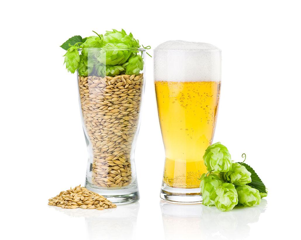 ビール純粋令の話