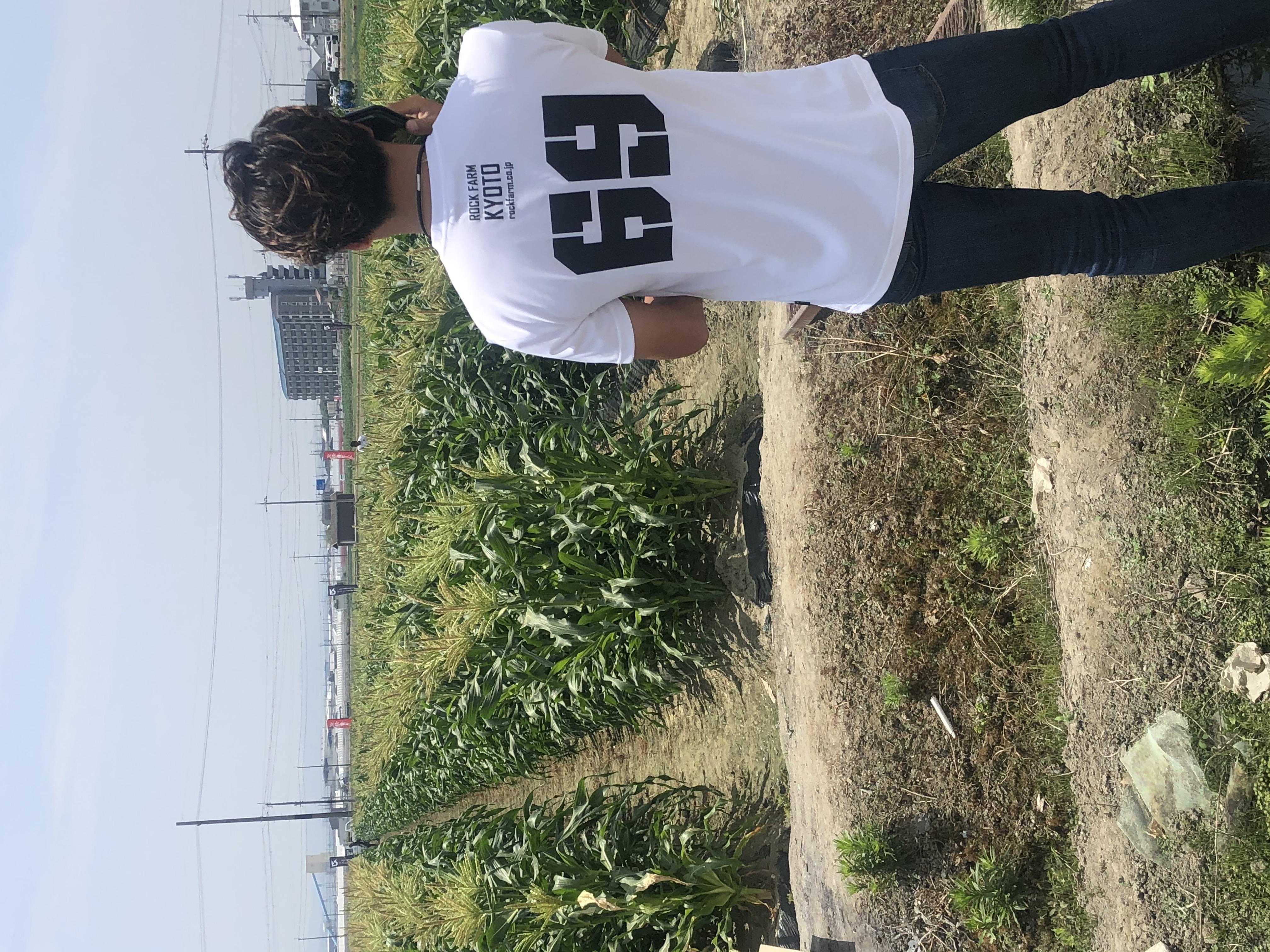 ロックファームの新しいTシャツ☆