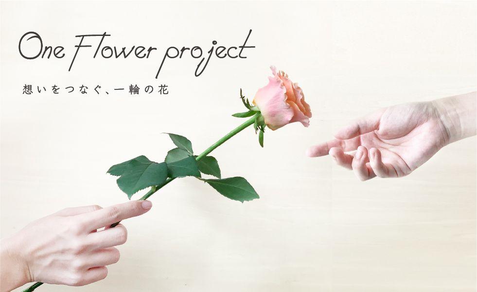 お花のつくり手を応援する、ワンフラワープロジェクト!!最高品質の一輪を¥500(送料込み)でお届け