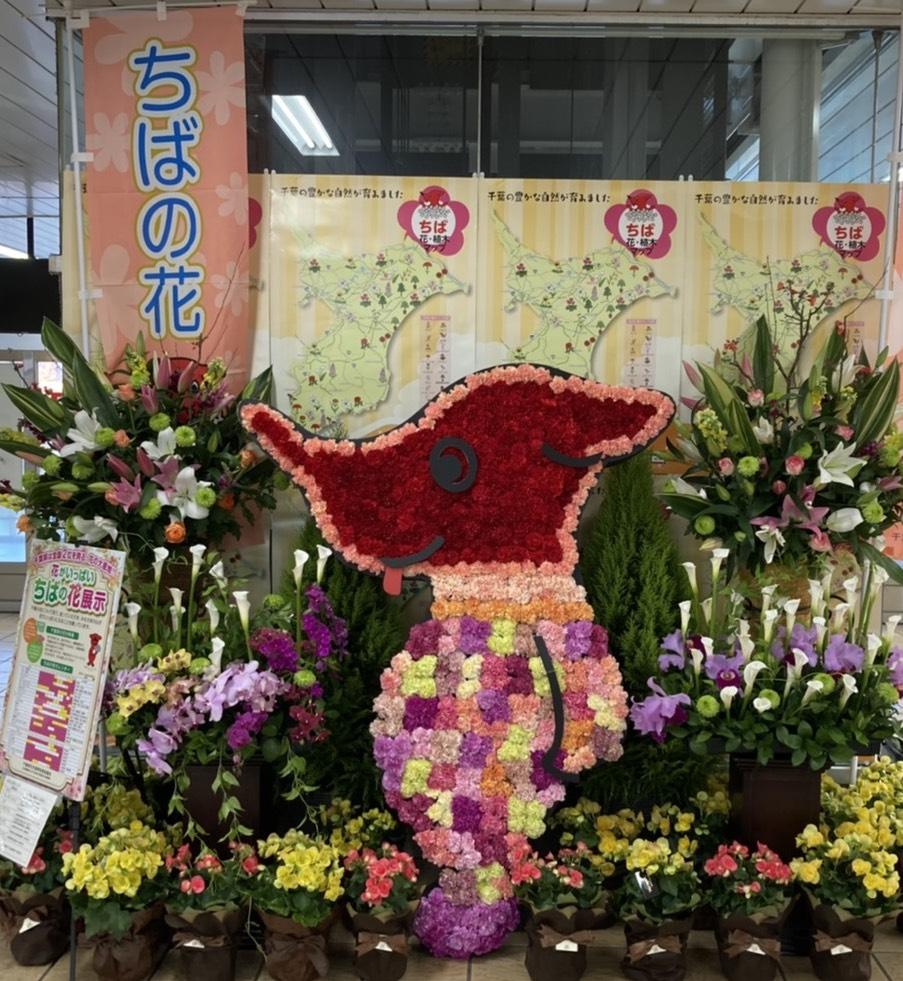 チーバくんのお花の装飾第3弾 千葉県つくばエクスプレス  流山おおたかの森駅改札内エレベーター付近
